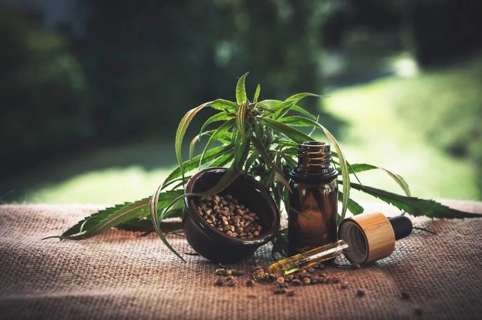 Cannabis medizinisch